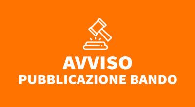 Bando pubblico per l'assegnazione di n. 3 concessioni di posteggi isolati